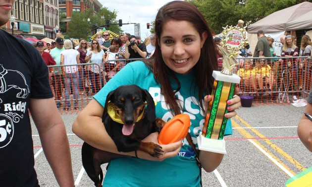 Weiner Dog Races